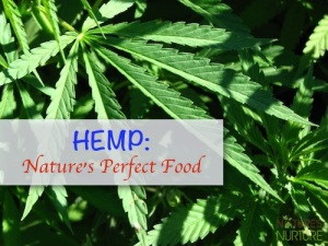 Health Benefits of Hemp - Nature's Perfect Food