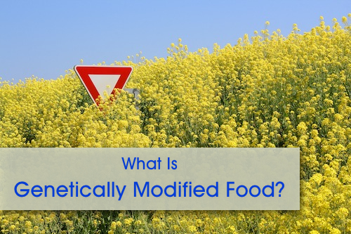 What Is Genetically Modified Food